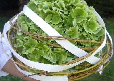 Le bouquet de la mariée, Boule d'hortensia