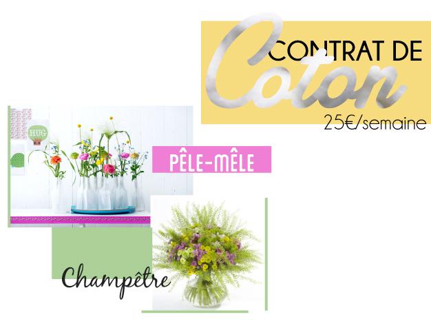 Abonnement floral pour les professionnels - Contrat de coton