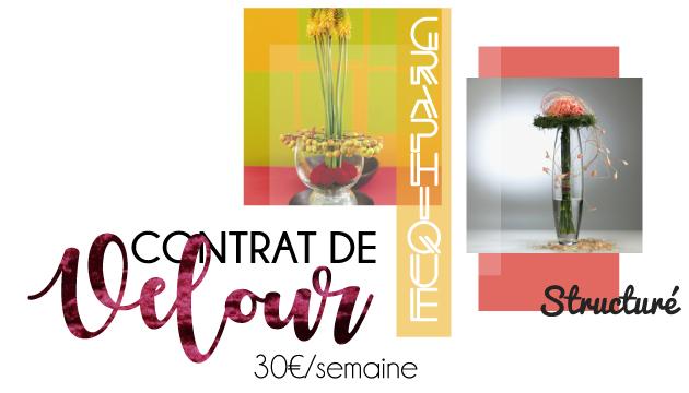 Abonnement floral pour les professionnels - Contrat de velour