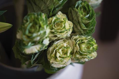 fleurs-galerie