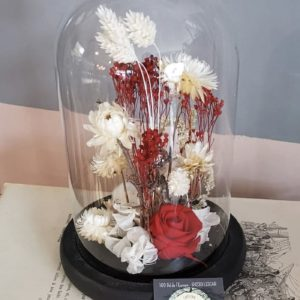 fleurs séchées sous cloche