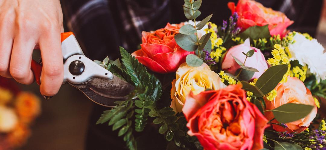 Fleurs, Arômes et Botaniques s'engage pour la planète